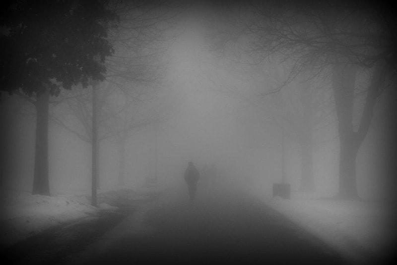 dustbunnyinthewind.com - fog
